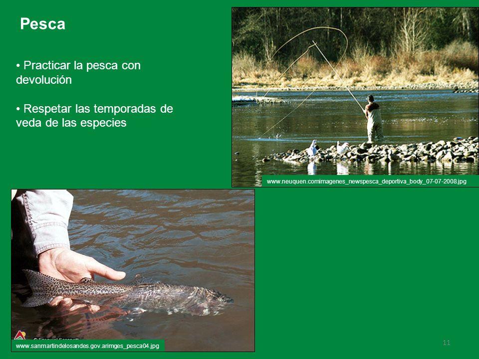 Pesca Practicar la pesca con devolución