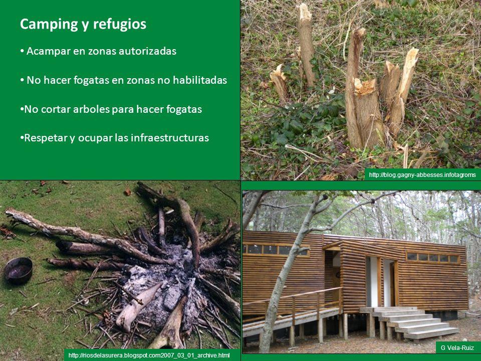Camping y refugios Acampar en zonas autorizadas