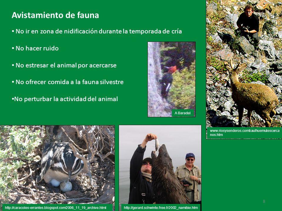 Avistamiento de fauna No ir en zona de nidificación durante la temporada de cría. No hacer ruido. No estresar el animal por acercarse.