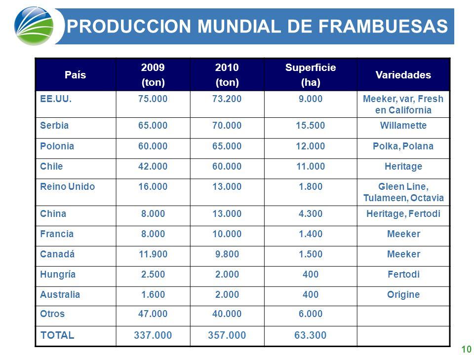 PRODUCCION MUNDIAL DE FRAMBUESAS
