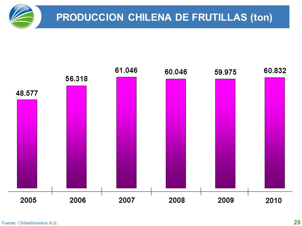 PRODUCCION CHILENA DE FRUTILLAS (ton)