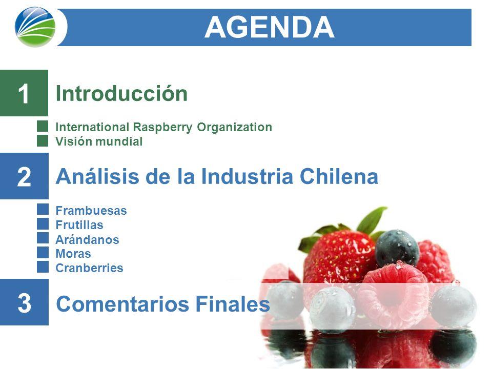AGENDA 1 2 3 Introducción Análisis de la Industria Chilena