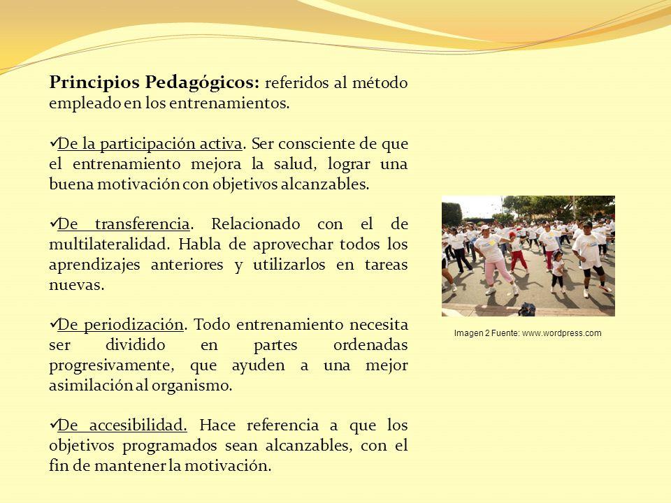 Principios Pedagógicos: referidos al método empleado en los entrenamientos.