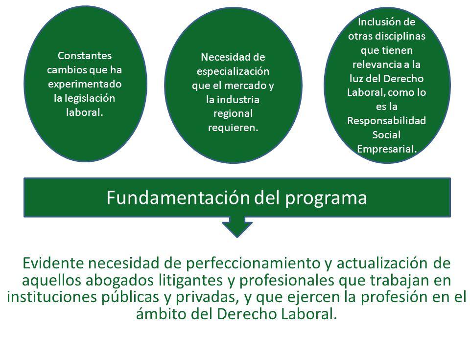 Fundamentación del programa