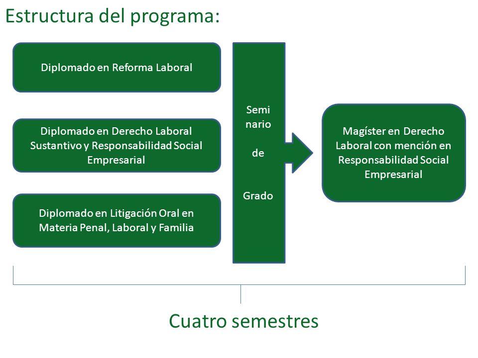 Estructura del programa: Cuatro semestres