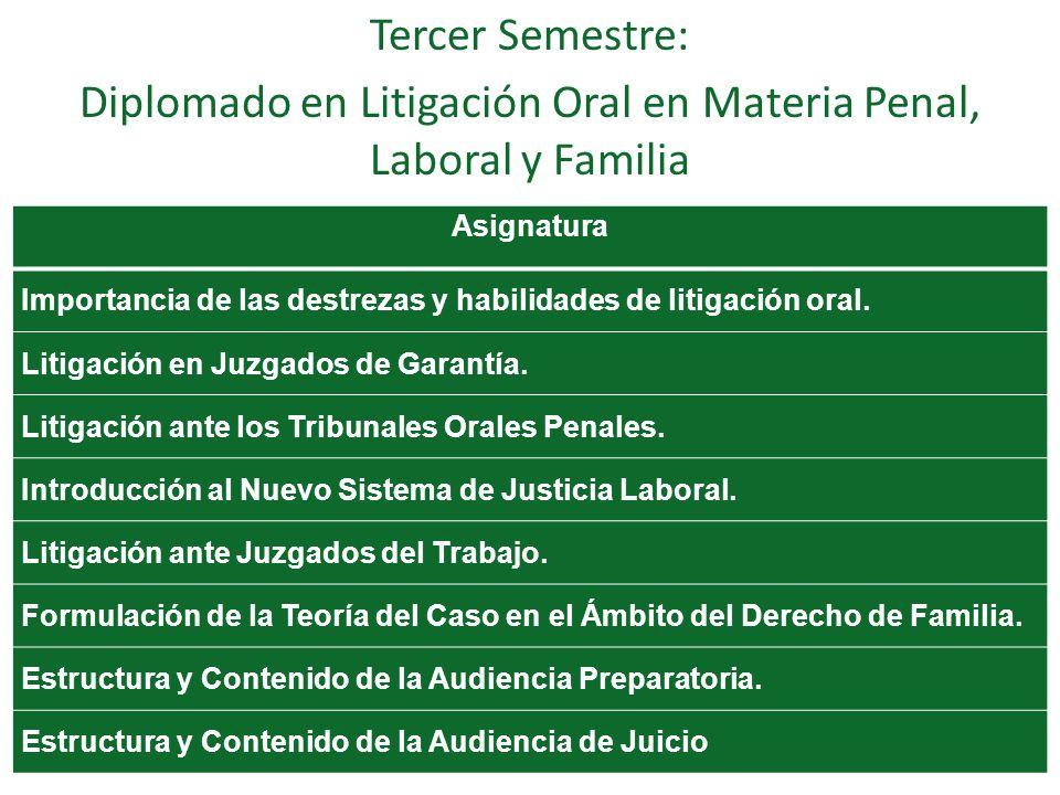 Diplomado en Litigación Oral en Materia Penal, Laboral y Familia