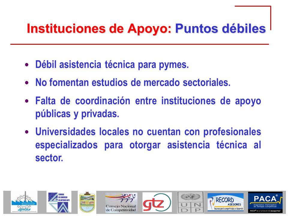 Instituciones de Apoyo: Puntos débiles