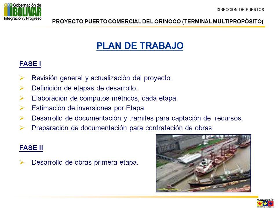 PLAN DE TRABAJO FASE I Revisión general y actualización del proyecto.