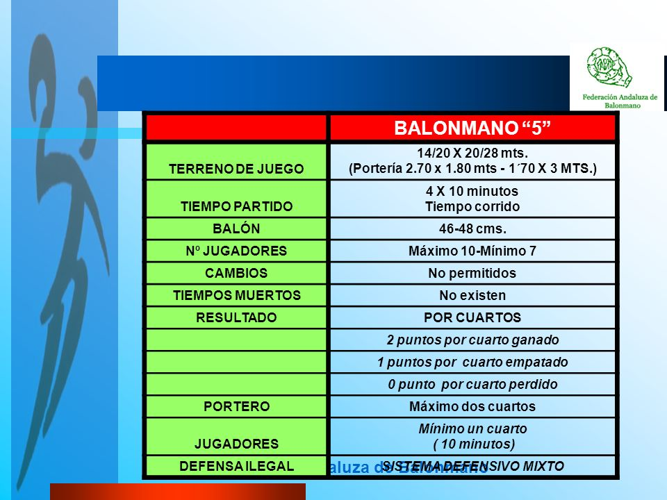 BALONMANO 5 Federación Andaluza de Balonmano TERRENO DE JUEGO