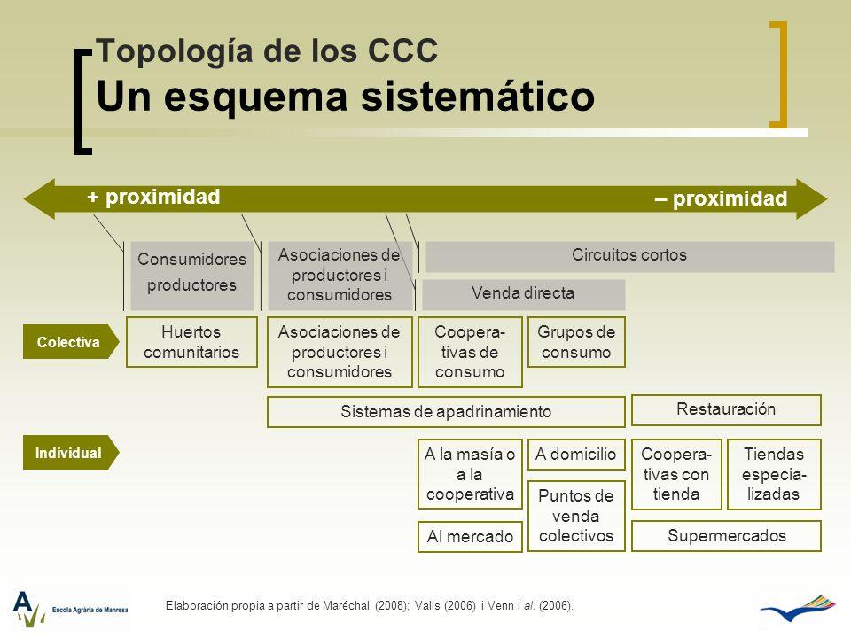 Topología de los CCC Un esquema sistemático