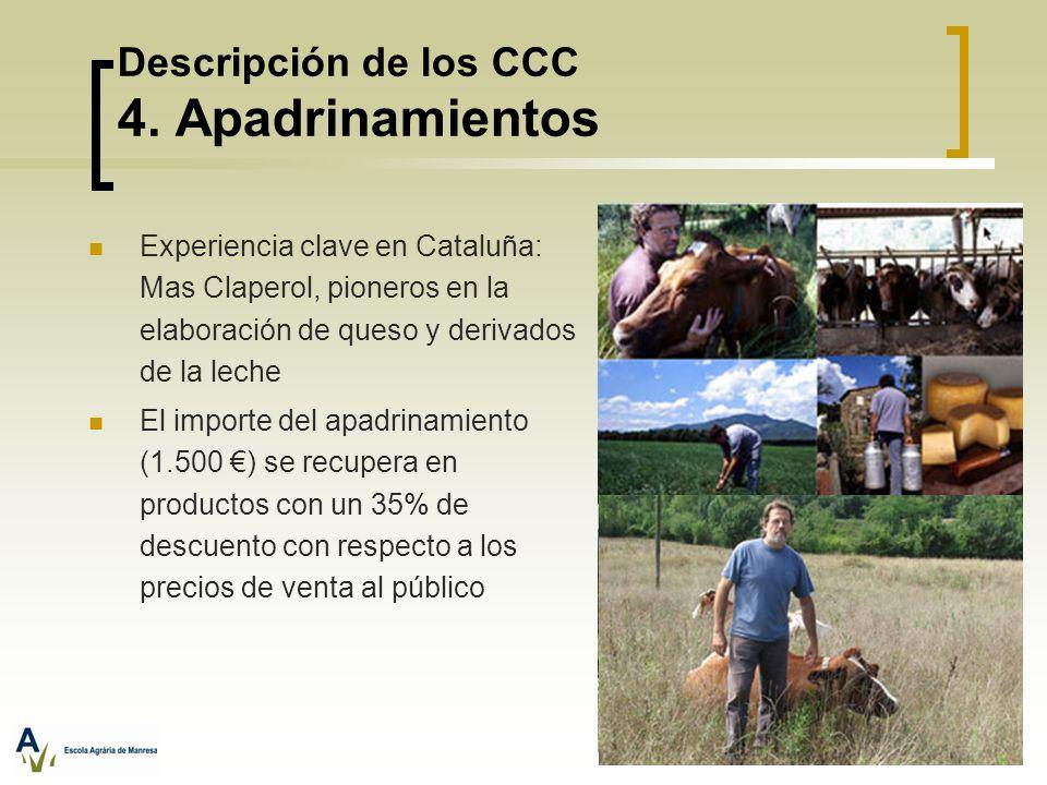 Descripción de los CCC 4. Apadrinamientos