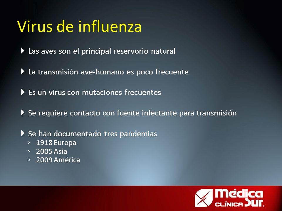 Virus de influenza Las aves son el principal reservorio natural