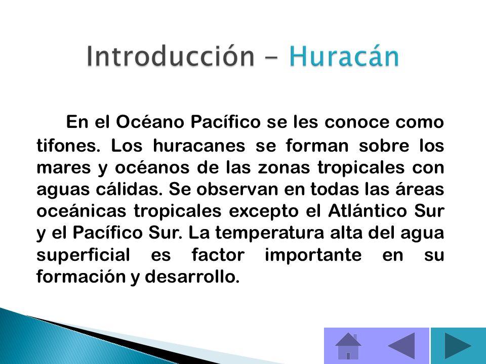 En el Océano Pacífico se les conoce como tifones