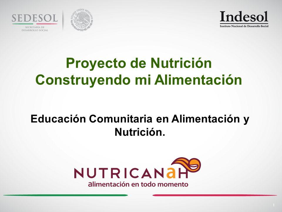 Proyecto de Nutrición Construyendo mi Alimentación