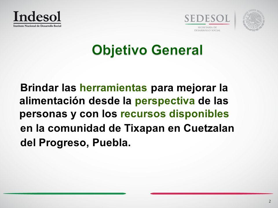 Brindar las herramientas para mejorar la alimentación desde la perspectiva de las personas y con los recursos disponibles en la comunidad de Tixapan en Cuetzalan del Progreso, Puebla.