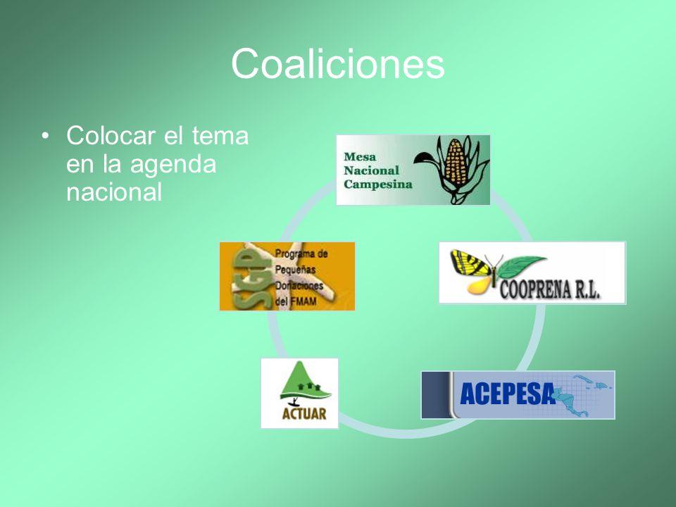 Coaliciones Colocar el tema en la agenda nacional 26