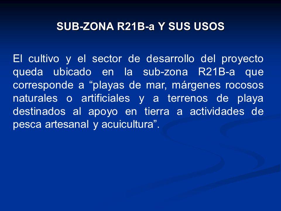 SUB-ZONA R21B-a Y SUS USOS