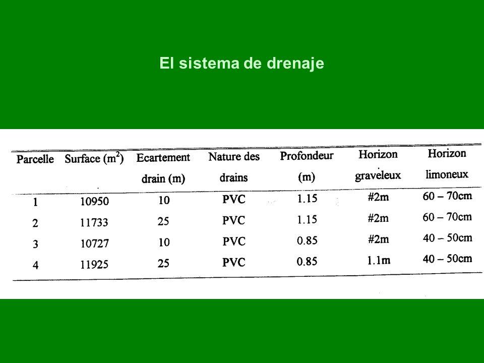 El sistema de drenaje