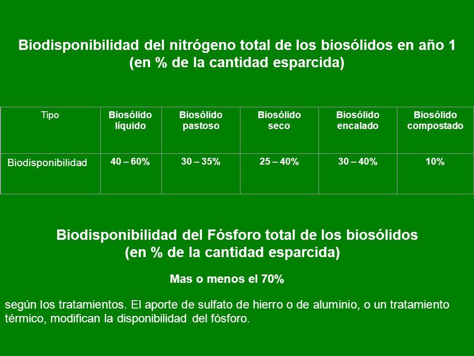 Biodisponibilidad del nitrógeno total de los biosólidos en año 1
