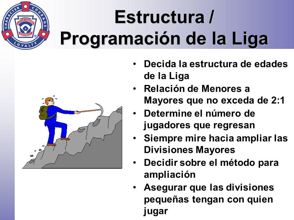Estructura / Programación de la Liga