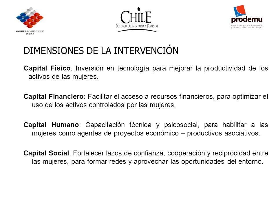 DIMENSIONES DE LA INTERVENCIÓN