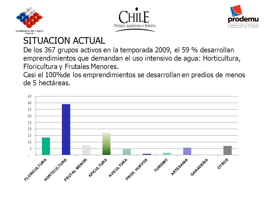 SITUACION ACTUAL De los 367 grupos activos en la temporada 2009, el 59 % desarrollan emprendimientos que demandan el uso intensivo de agua: Horticultura, Floricultura y Frutales Menores.