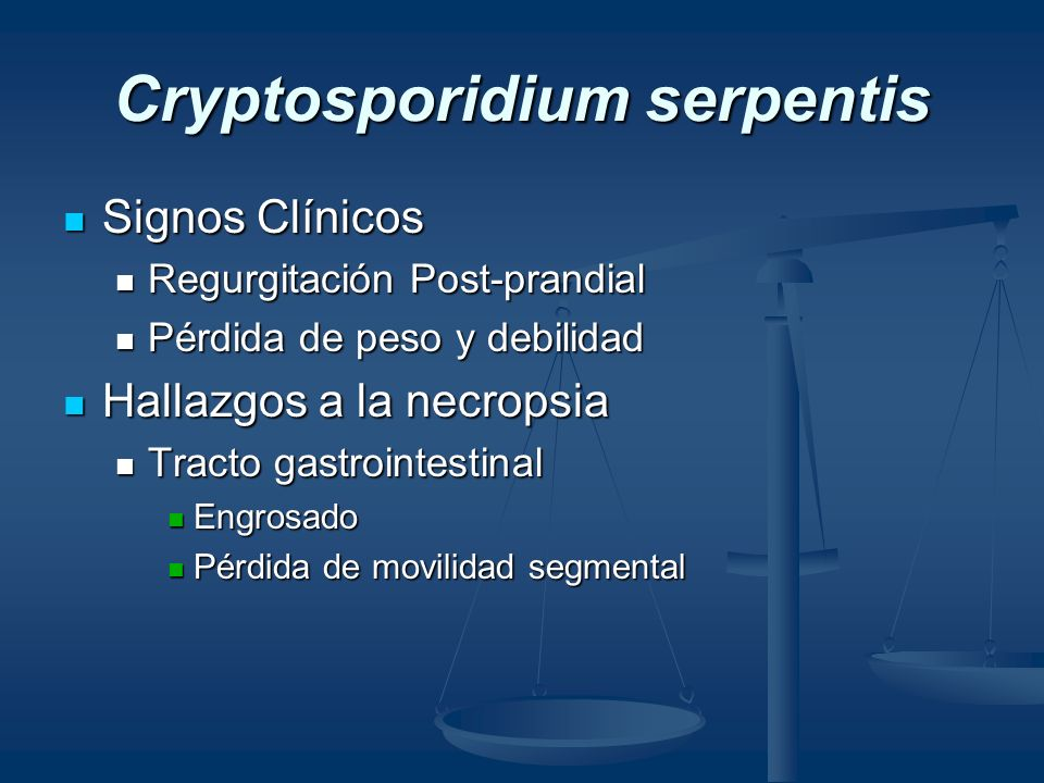 Cryptosporidium serpentis