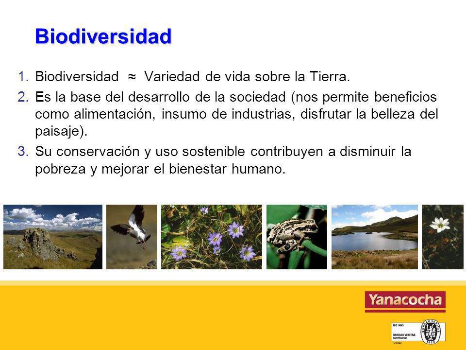 Biodiversidad Biodiversidad ≈ Variedad de vida sobre la Tierra.