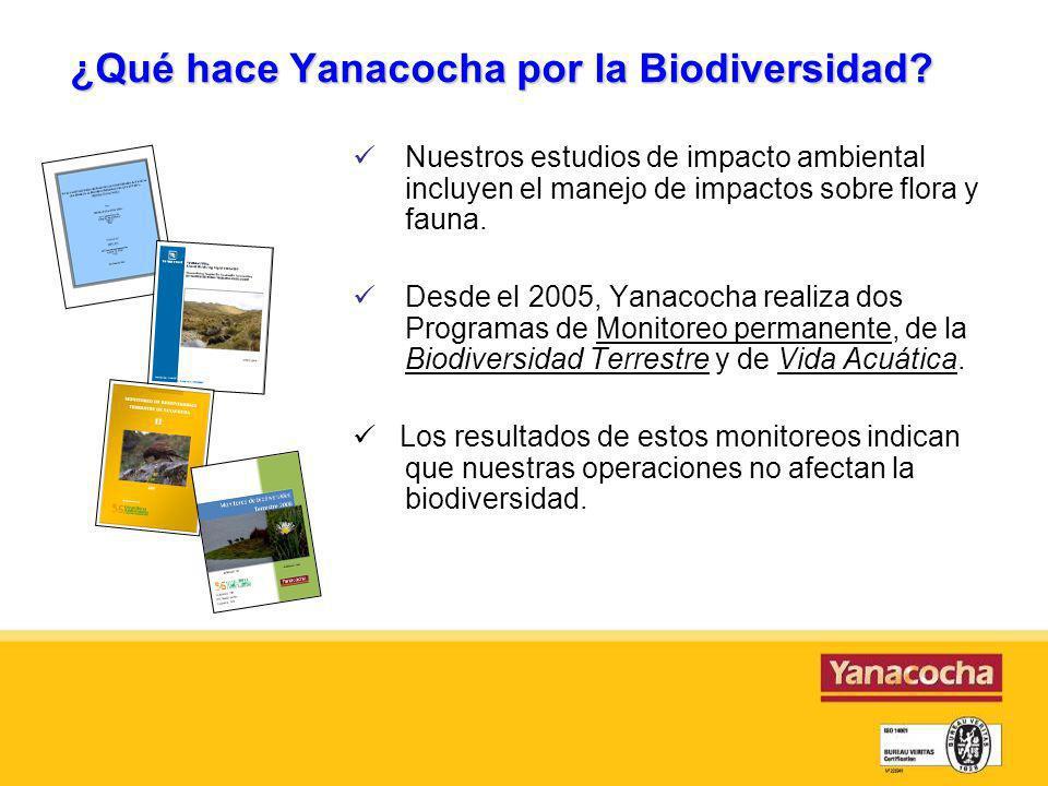 ¿Qué hace Yanacocha por la Biodiversidad