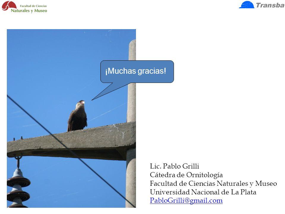 ¡Muchas gracias! Lic. Pablo Grilli Cátedra de Ornitología