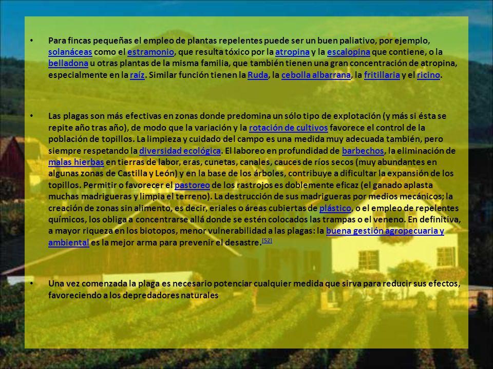 Para fincas pequeñas el empleo de plantas repelentes puede ser un buen paliativo, por ejemplo, solanáceas como el estramonio, que resulta tóxico por la atropina y la escalopina que contiene, o la belladona u otras plantas de la misma familia, que también tienen una gran concentración de atropina, especialmente en la raíz. Similar función tienen la Ruda, la cebolla albarrana, la fritillaria y el ricino.
