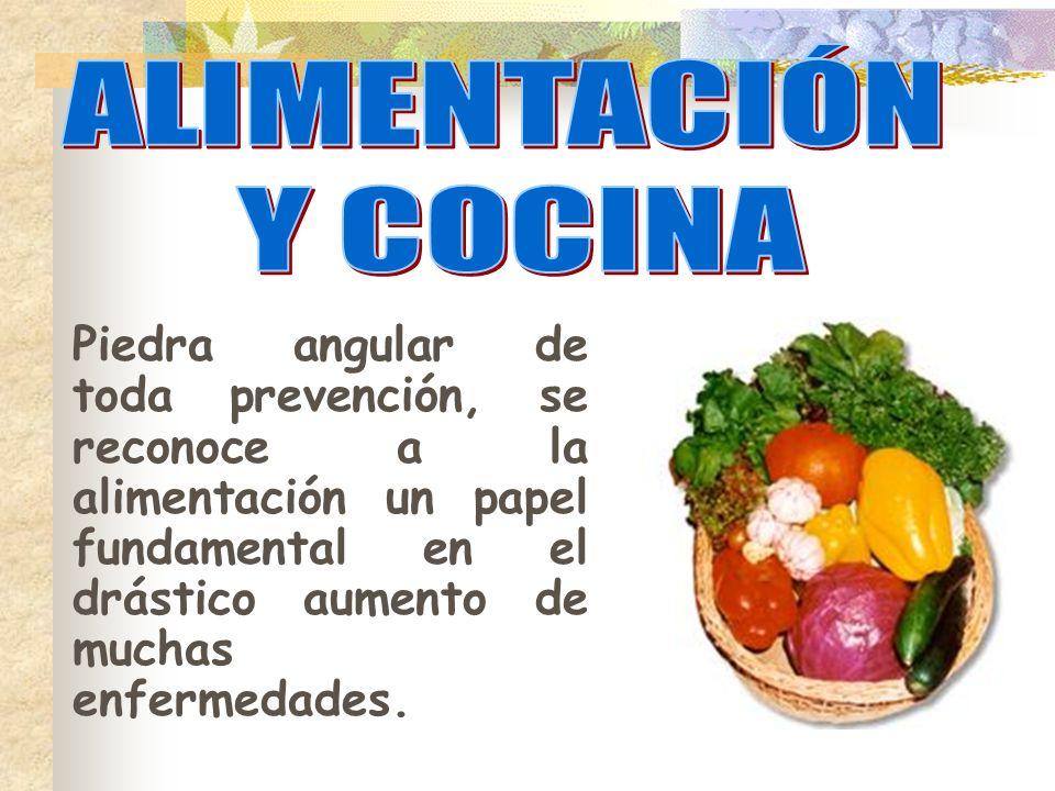 ALIMENTACIÓN Y COCINA.