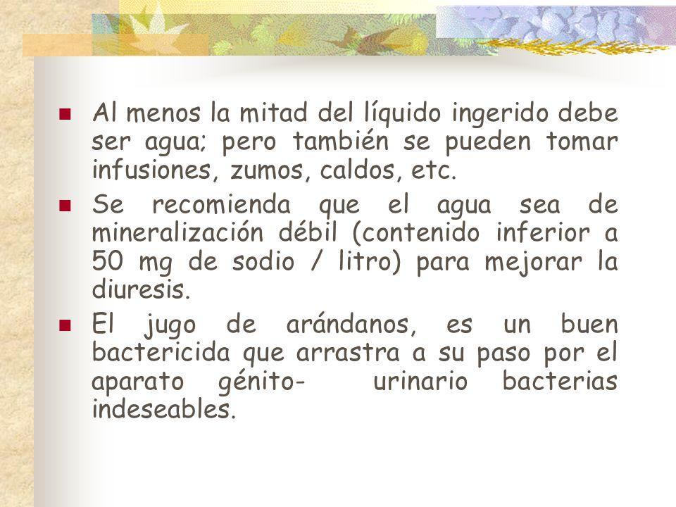 Al menos la mitad del líquido ingerido debe ser agua; pero también se pueden tomar infusiones, zumos, caldos, etc.