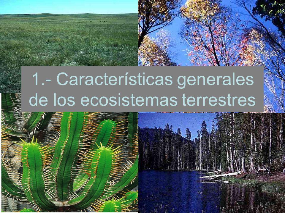 1.- Características generales de los ecosistemas terrestres