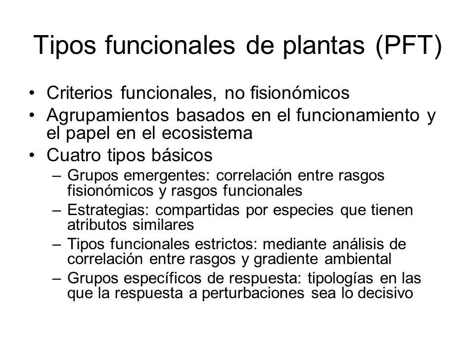 Tipos funcionales de plantas (PFT)