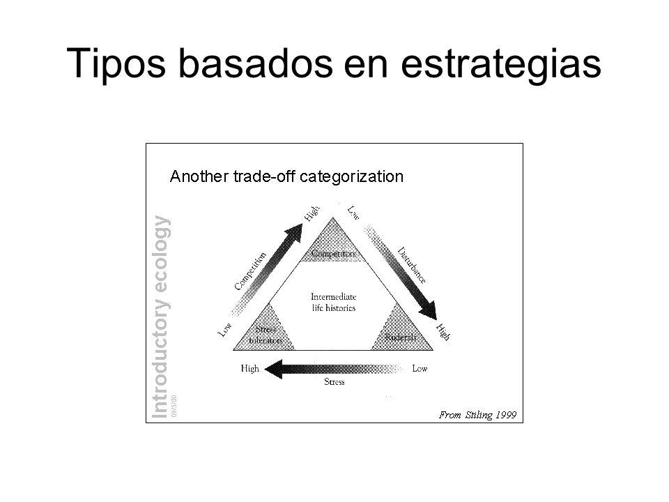 Tipos basados en estrategias
