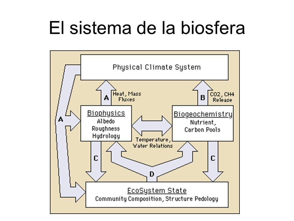 El sistema de la biosfera