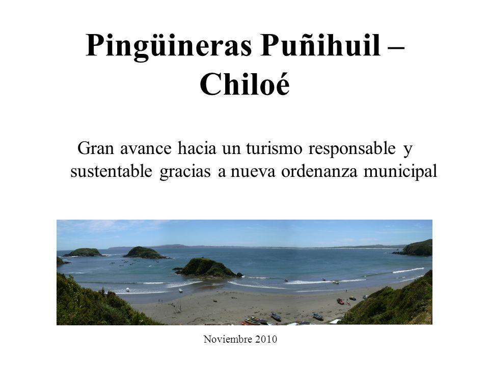 Pingüineras Puñihuil – Chiloé