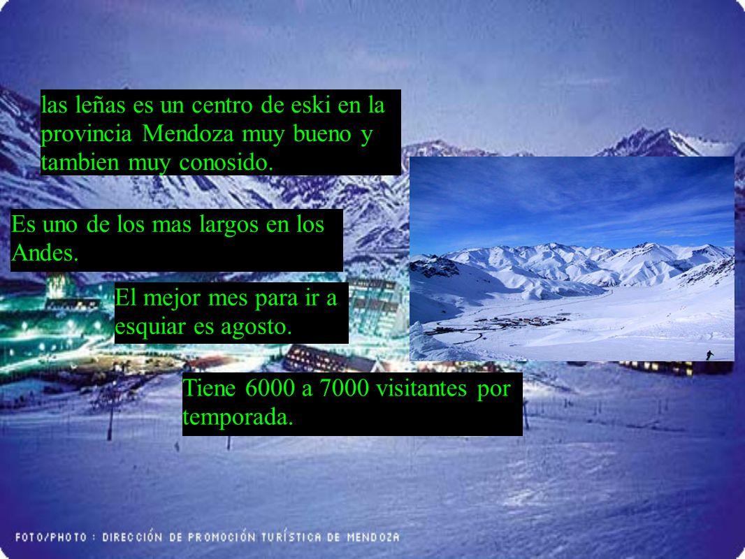 las leñas es un centro de eski en la provincia Mendoza muy bueno y tambien muy conosido.