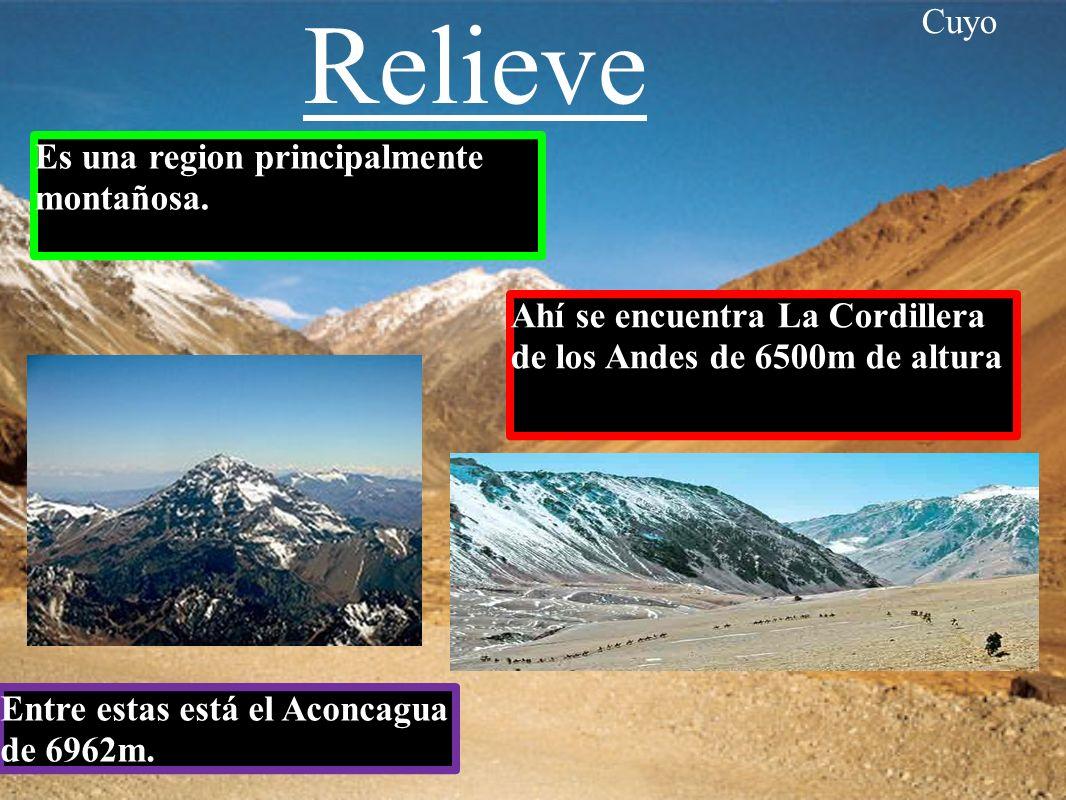 Relieve Cuyo Es una region principalmente montañosa.