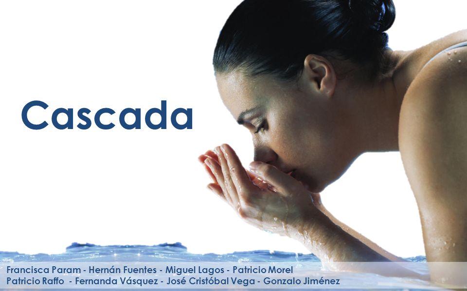 Cascada Francisca Param - Hernán Fuentes - Miguel Lagos - Patricio Morel.