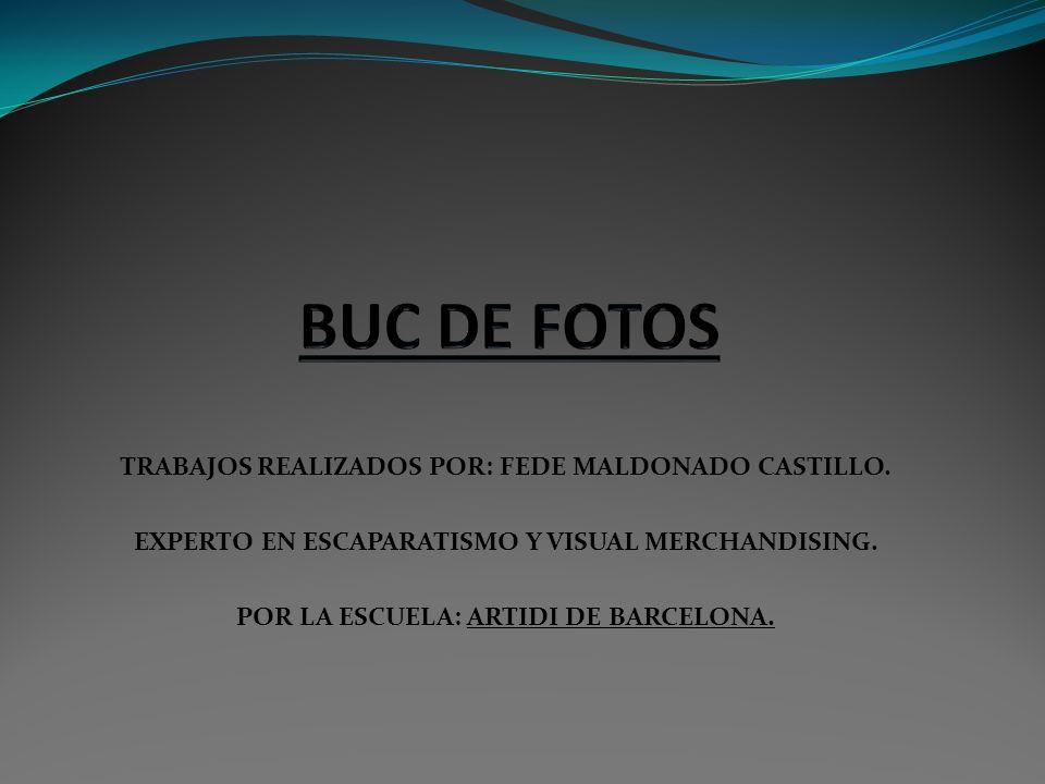 BUC DE FOTOS TRABAJOS REALIZADOS POR: FEDE MALDONADO CASTILLO.
