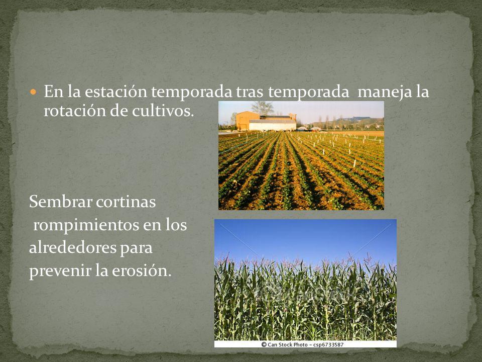 En la estación temporada tras temporada maneja la rotación de cultivos.
