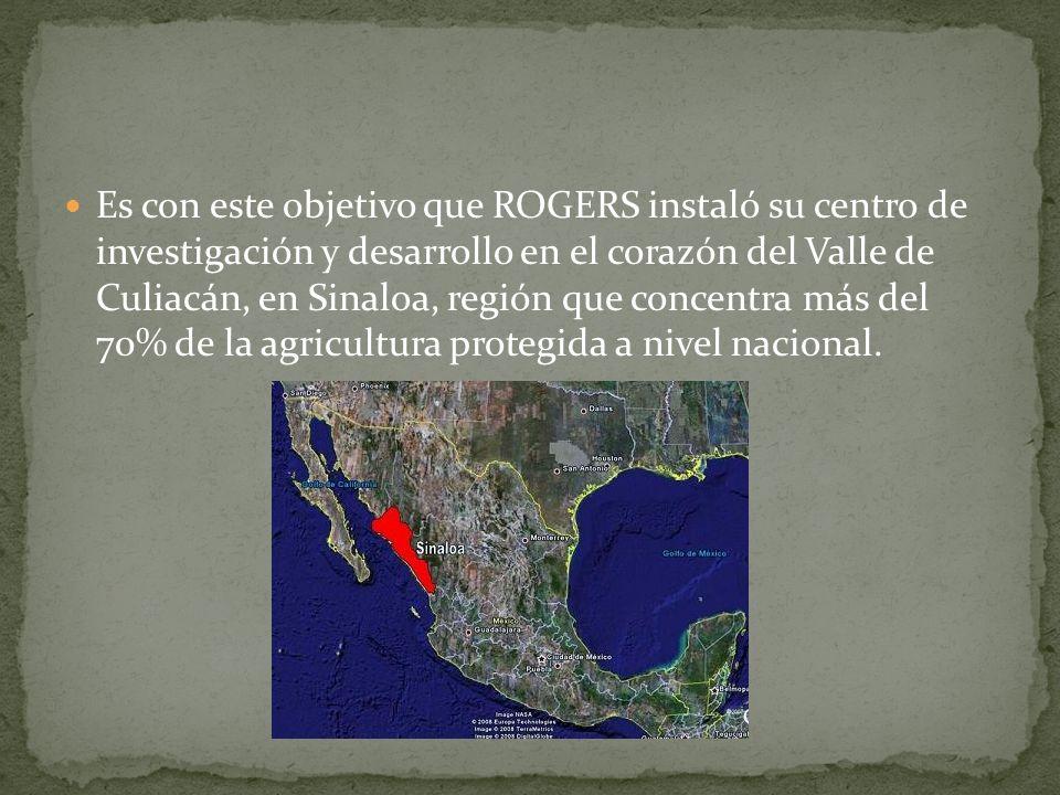 Es con este objetivo que ROGERS instaló su centro de investigación y desarrollo en el corazón del Valle de Culiacán, en Sinaloa, región que concentra más del 70% de la agricultura protegida a nivel nacional.