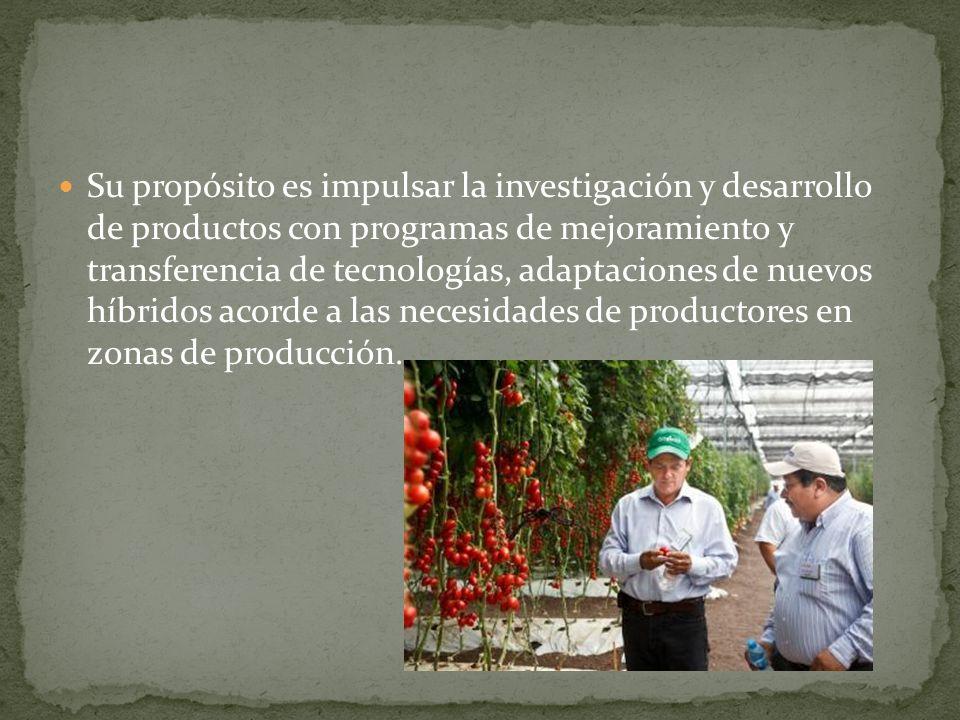Su propósito es impulsar la investigación y desarrollo de productos con programas de mejoramiento y transferencia de tecnologías, adaptaciones de nuevos híbridos acorde a las necesidades de productores en zonas de producción.