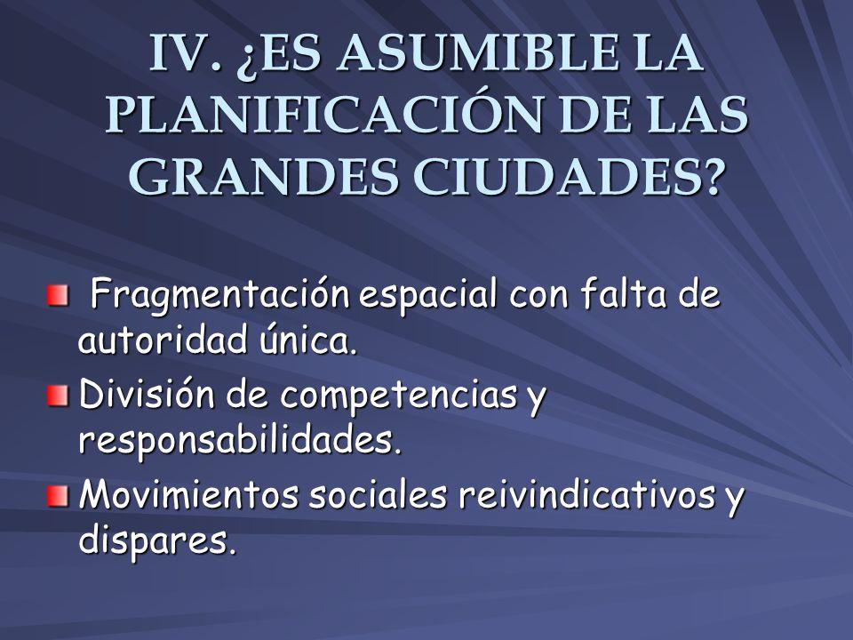 IV. ¿ES ASUMIBLE LA PLANIFICACIÓN DE LAS GRANDES CIUDADES