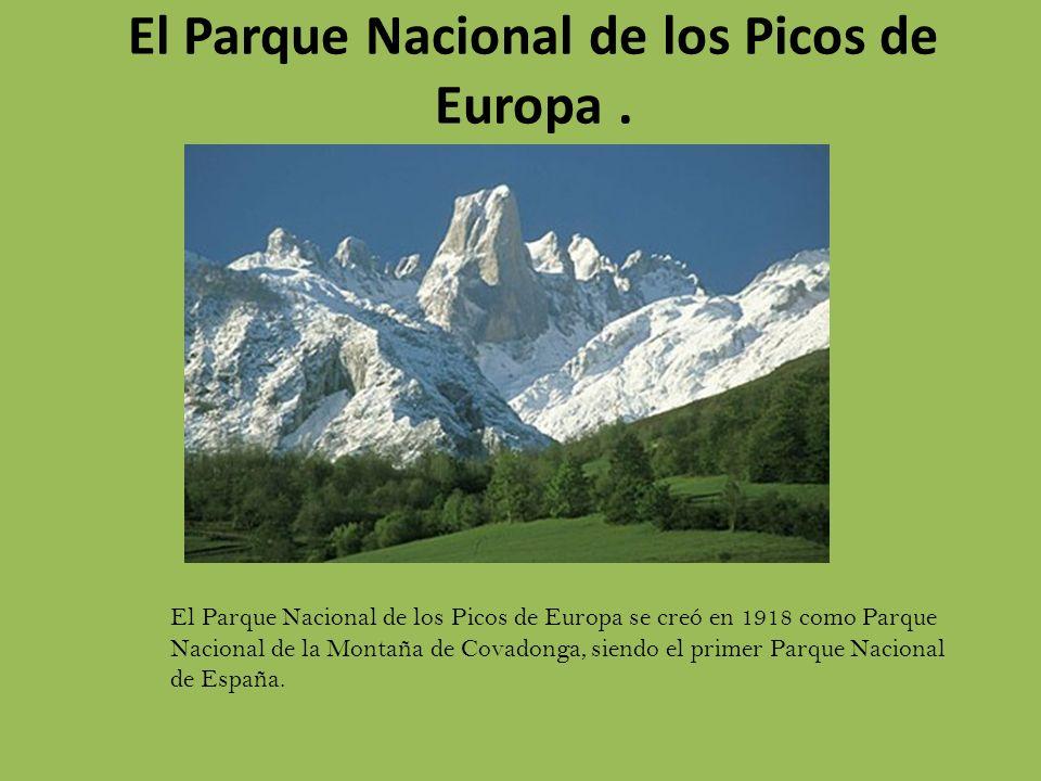 El Parque Nacional de los Picos de Europa .