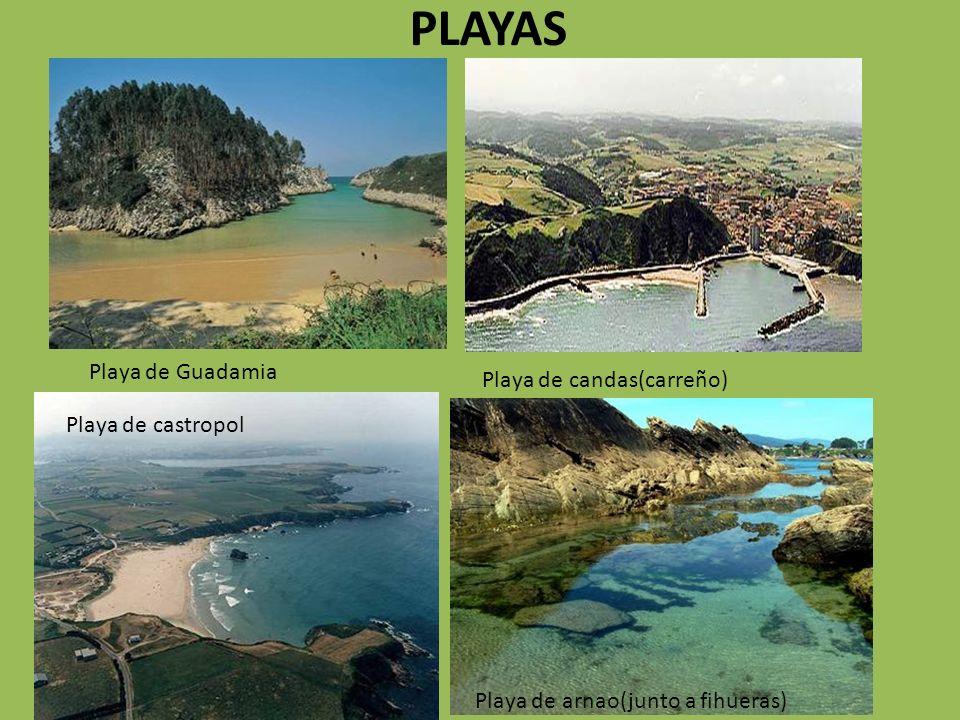 PLAYAS Playa de candas(carreño) Playa de castropol Playa de Guadamia