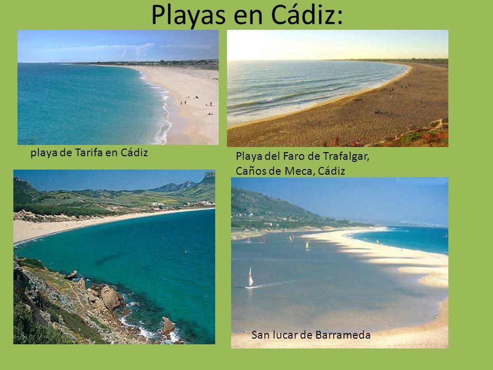 Playas en Cádiz: playa de Tarifa en Cádiz