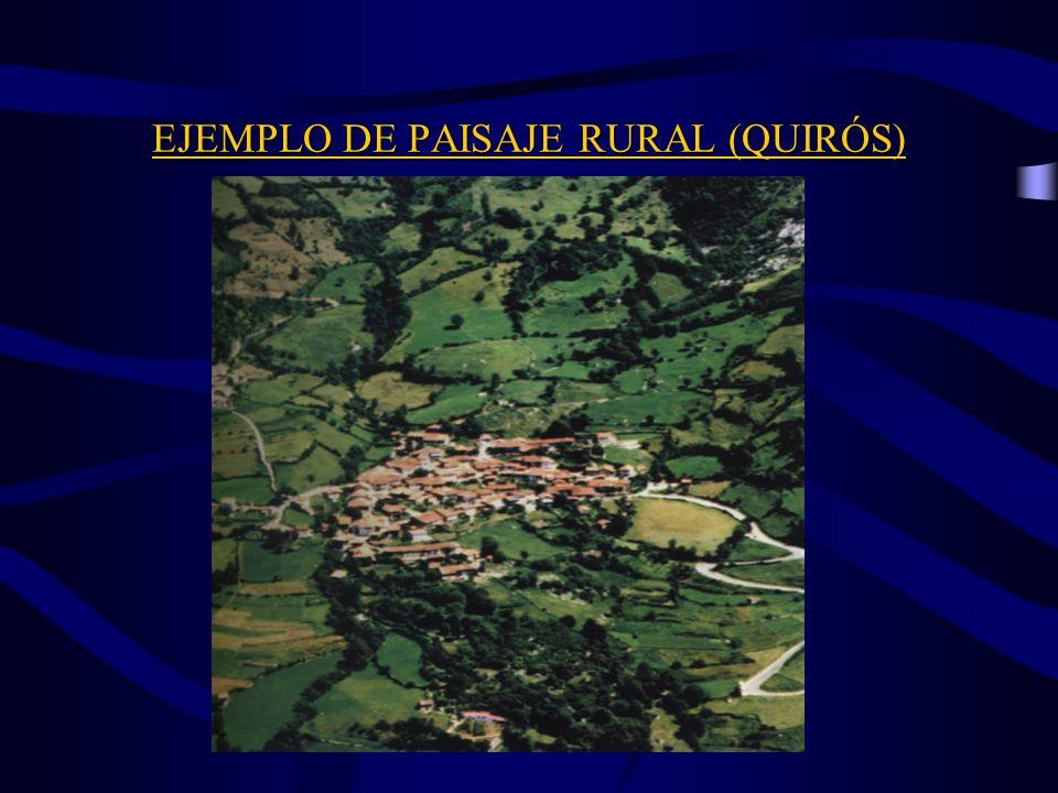 EJEMPLO DE PAISAJE RURAL (QUIRÓS)